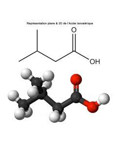 Acide Isovalérique
