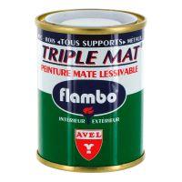 Peinture Triple Mat 100ml Flambo
